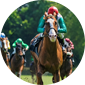 Best horse racing betting odds site